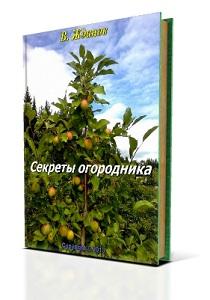 обложка5-1