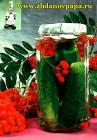 ogurtsyi-konservirovannyie-s-grozdyami-ryabinyi